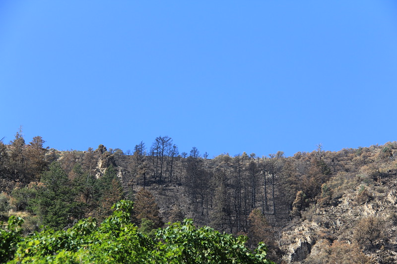 20180826-06 - Middle Canyon Fire.JPG