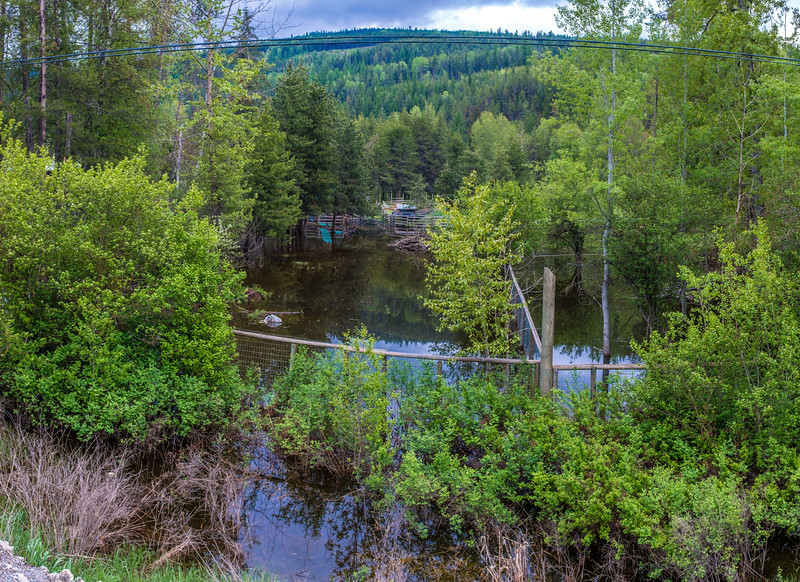 Moyie River Ranch Underwater