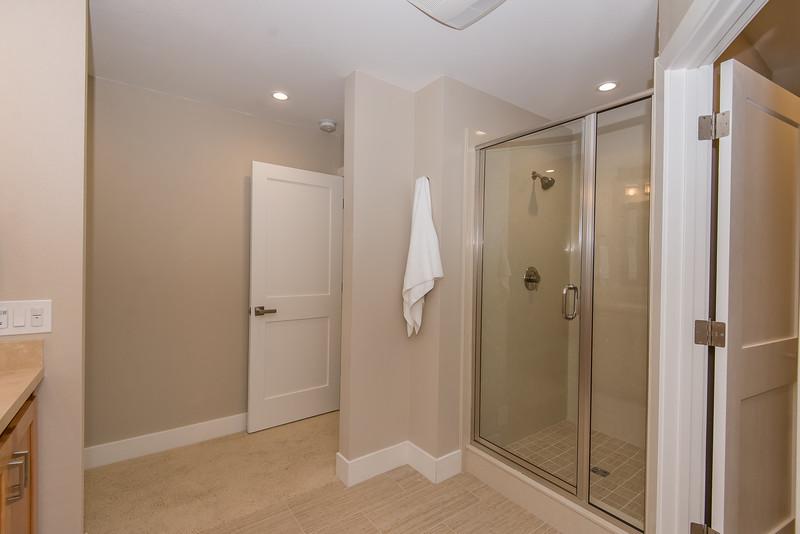 DSC_5063_mstr_shower.jpg