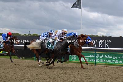 Arabian Racing 2015