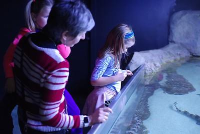 Trip to Austin Aquarium
