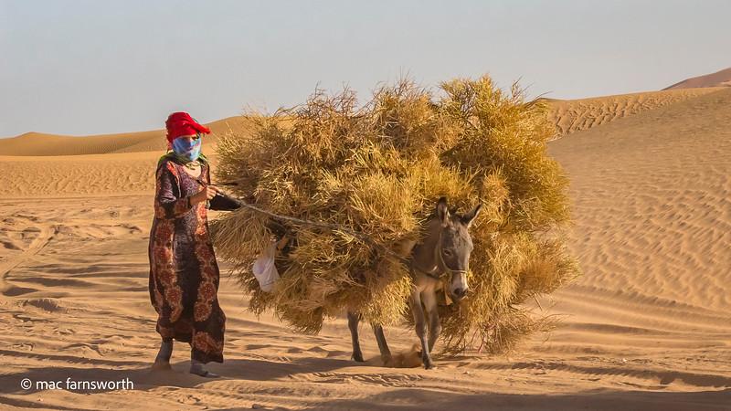 Morocco023October 14, 2017.jpg