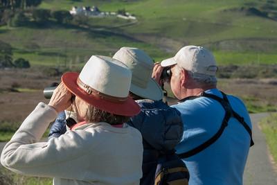 Petaluma Birding 2018