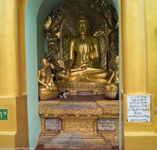 08 - Yangon August 2018 19.jpg