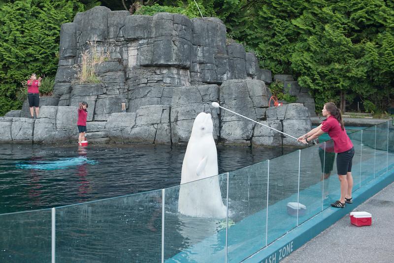 Aquarium_002.jpg