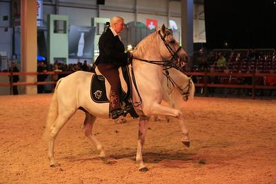 13.10.2013 Messe Hund und Pferd