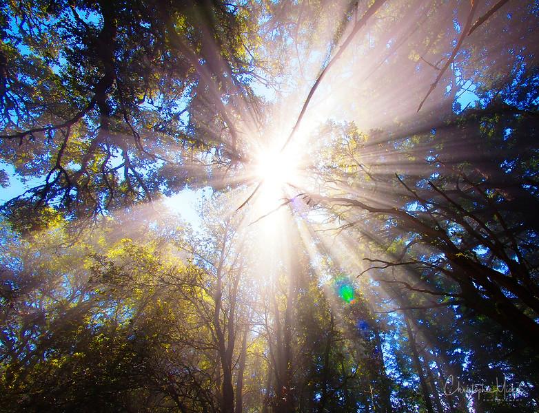 20100710_hiking_7925.jpg