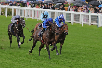 3 King's Stand Stakes Gr1 5f