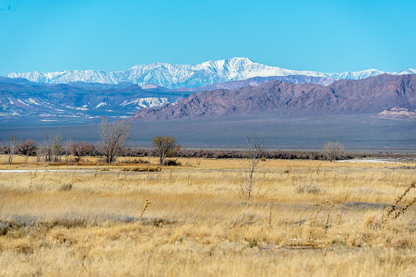 Ash Meadows NWR and Dante's View