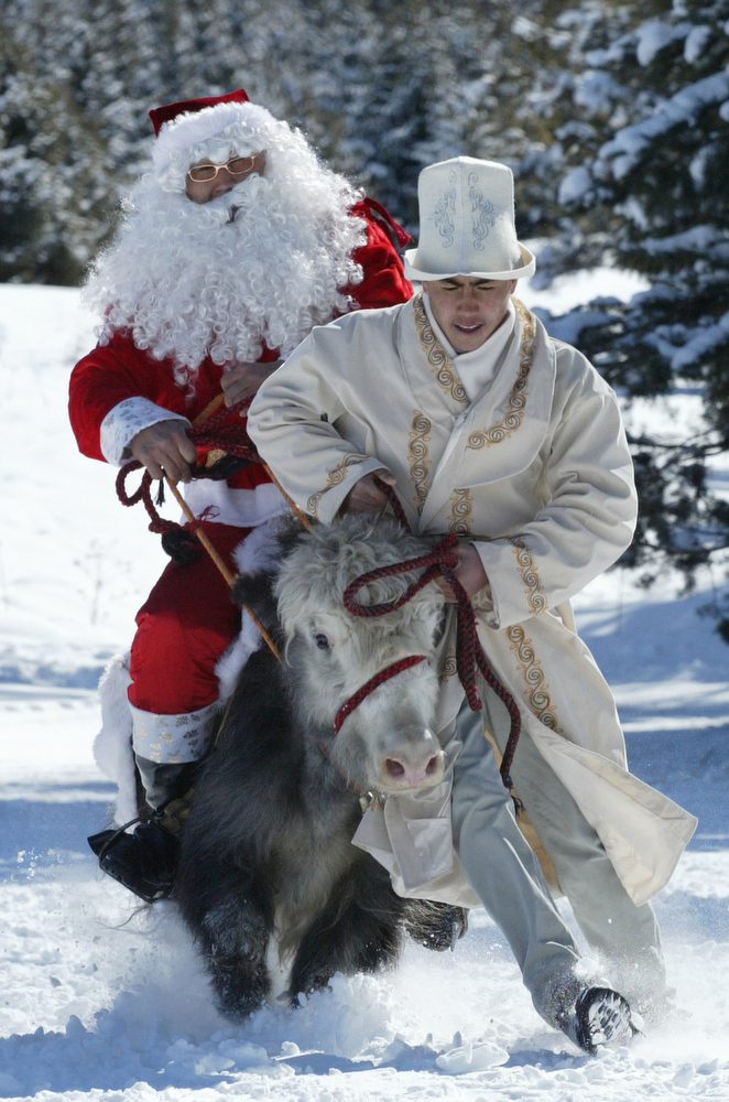 ". Picture taken on February 24, 2008 shows a Santa Claus riding a yak at an international coalition of Santa Clauses 400 km from Bishkek in the town Karakol. Santa Clauses arrived from Russia, Iran, Kyrgyzstan, Kazakhstan and Denmark to particpate in the first ever ""International Santa Claus Festival\"". AFP PHOTO / VYACHESLAV OSELEDKO"