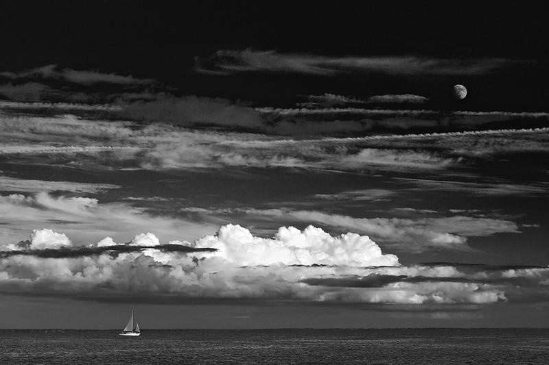 Follow the Moon - Dom Mignone