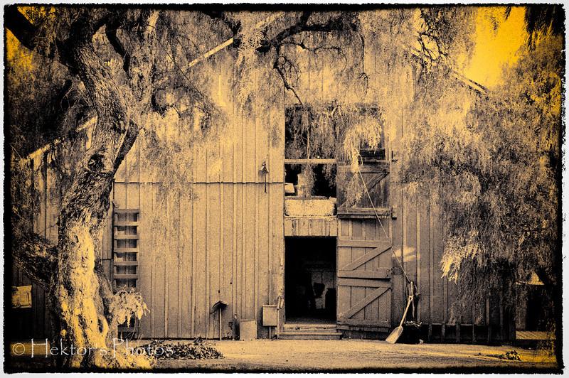 Rancho Los Alamitos (5 of 10).jpg