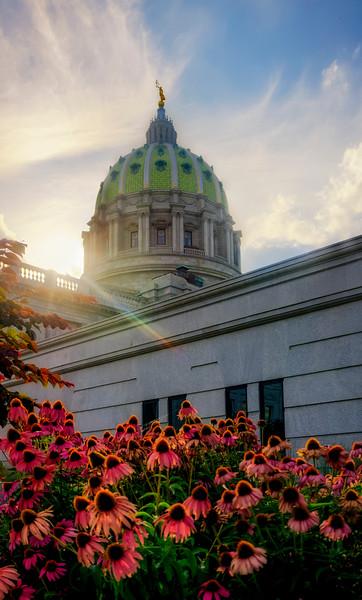 Harrisburg Photowalk - Capitol Flowers (p).jpg
