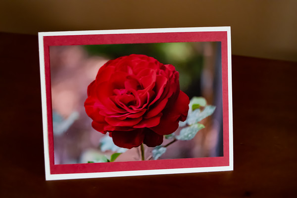 Photos for Cardstock Cards