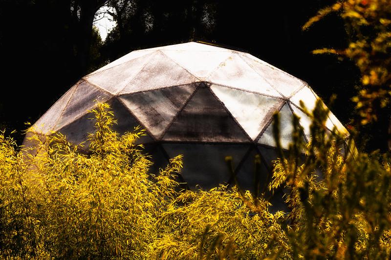 Dome, U. C. Santa Cruz Arboretum, California, 2010