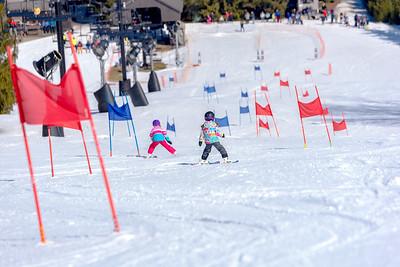 Dual Giant Slalom 3-7-20