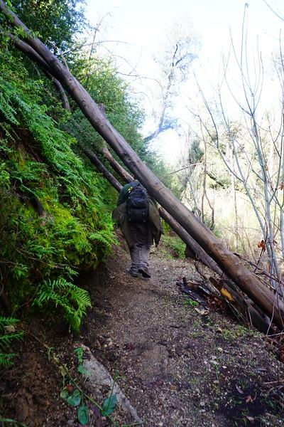 20160218051-Gabrielino Trail Scouting.JPG