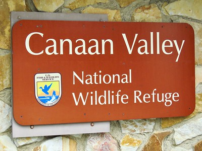 Canaan Valley SP, WV