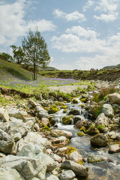 Rannerdale Stream 1