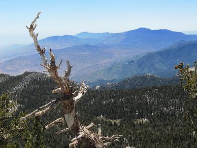 San Jacinto (10,834) / Miller Peak (10,405) - May 28, 2011