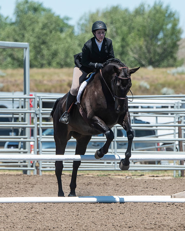 DES 2019 Horseshow #'s 111 to 115