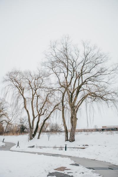 AVS_EcoPreserve_Winter2021-2.jpg