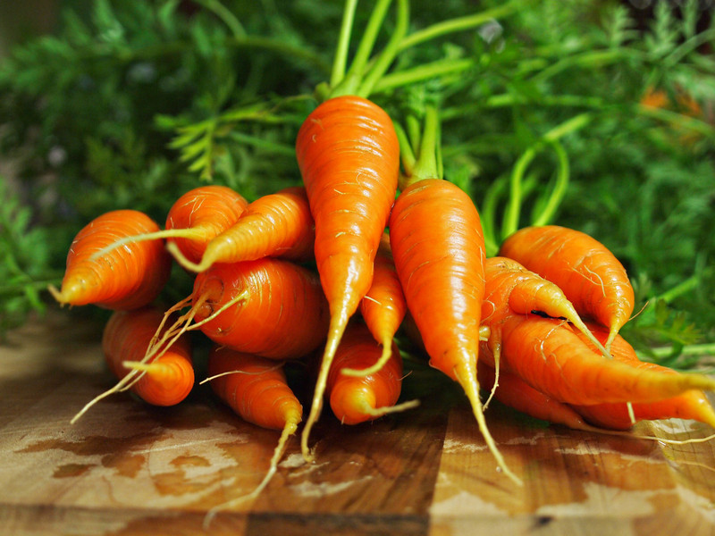 Carrots Fresh from the   Order Code: A31