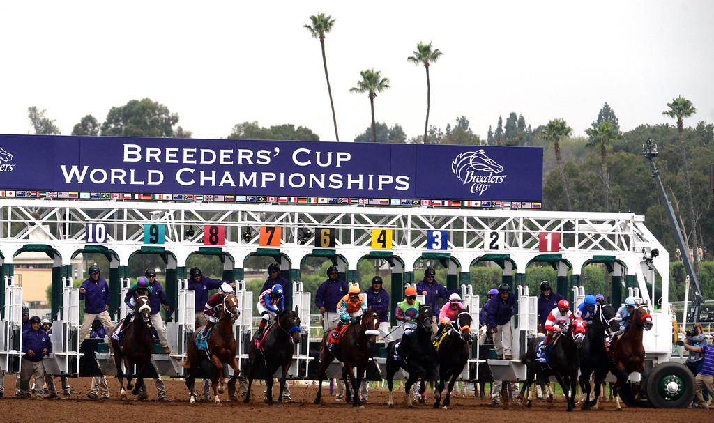 ". Jockey Rafael Bejarano, right, a top \""Goldencents\"" wins the Breeders Cup Dirt Mile during the 2014 Breeders� Cup World Championships at Santa Anita Park in Arcadia, Calif., Friday, Oct. 31, 2014.  (Photo by Keith Birmingham/ Pasadena Star-News)"
