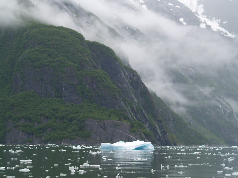 The approach to South Sawyer Glacier, passing Sawyer Island. The cruise ships cannot get past the island.