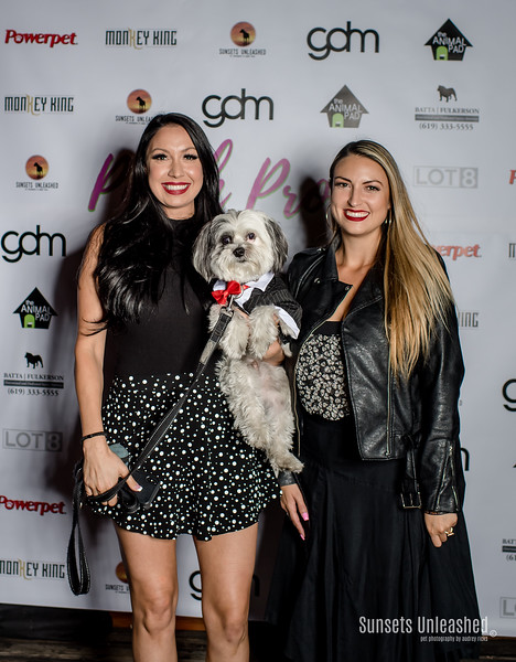 Pooch Prom 2018 - Fundraiser for The Animal Pad Rescue