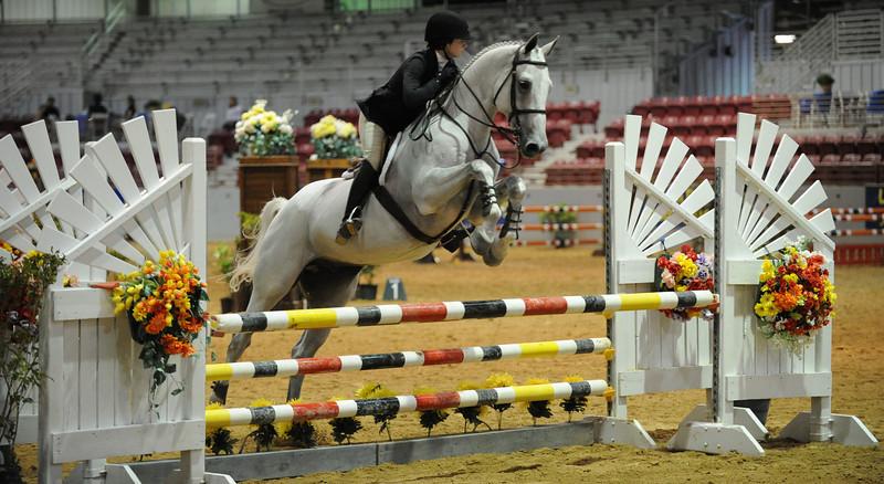 Horse show (84).jpg