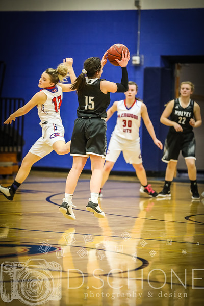 GC Girl's Basketball vs. Elmwood Plum City-186.JPG