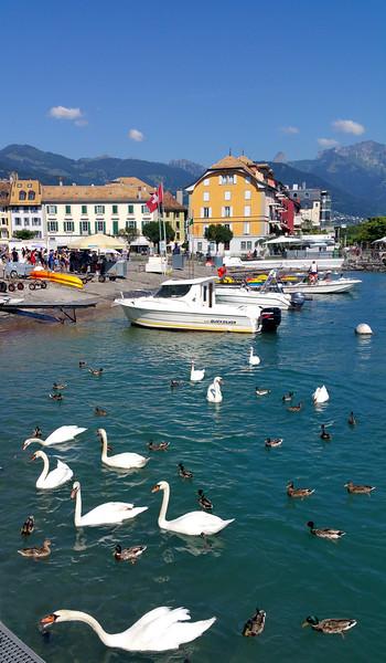 City of Vevey, Lake Geneva, Surrounding Attractions