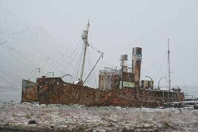 Abandoned whaling ship, Grytviken, South Georgia Island