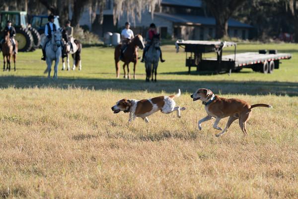 2020_01_25  Foxhunt at Perry Plantation