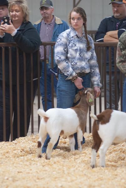 kay_county_showdown_goats_20191207-154.jpg