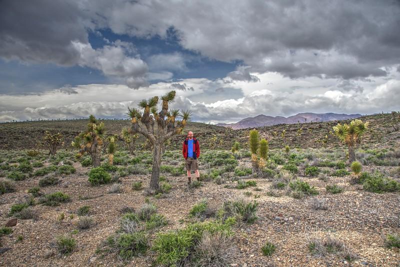 Joel-Joshua-Tree-Death-Valley-Cabin2-Beechnut-Photos-rjduff.jpg