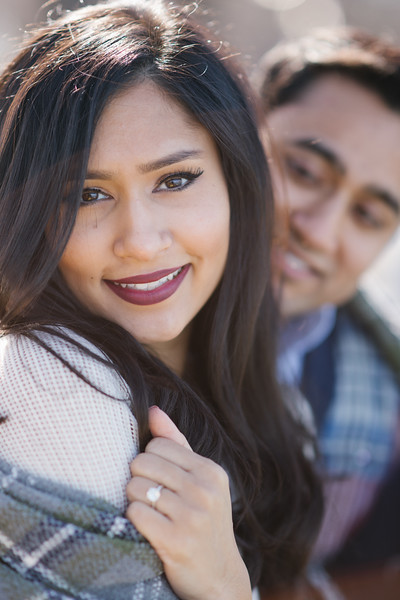 Le Cape Weddings - Gursh and Shelly - Chicago Engagement Photographer -50.jpg