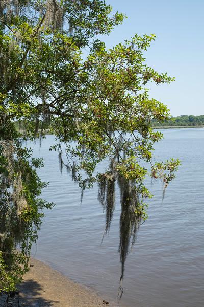 180512-124250-Charleston-4300.jpg