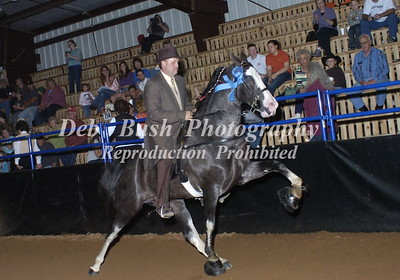 CLASS 17  - 4 YR OLD OPEN SPECIALTY