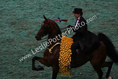 2009 World's Championship Saddlebred Horse Show