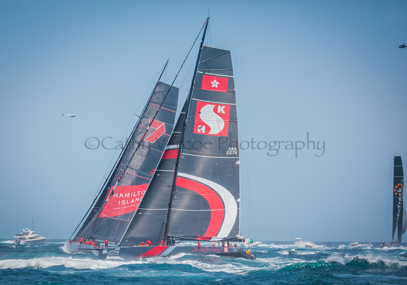 Infotrack leading Wild Oats XI and Scallywag