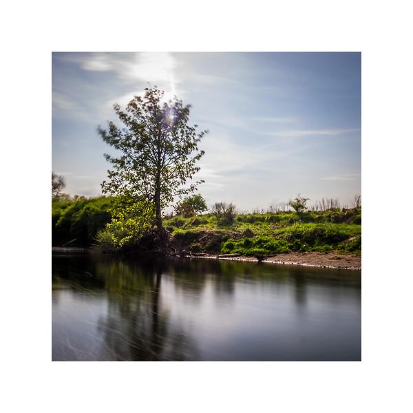 120_RiverAllan_10x10.jpg