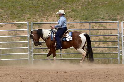 Jr. Horse Western Pleasure