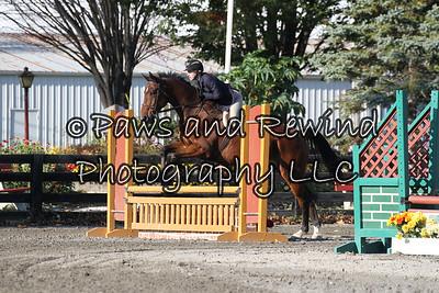 Ring II: Pre Children's Horse O/F
