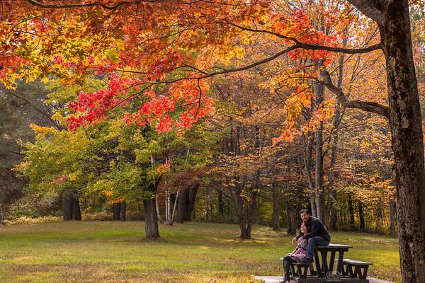 VermontQuebecMontreal