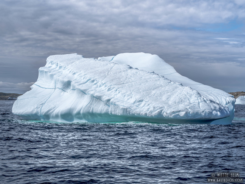 Iceberg 49    Photography by Wayne Heim