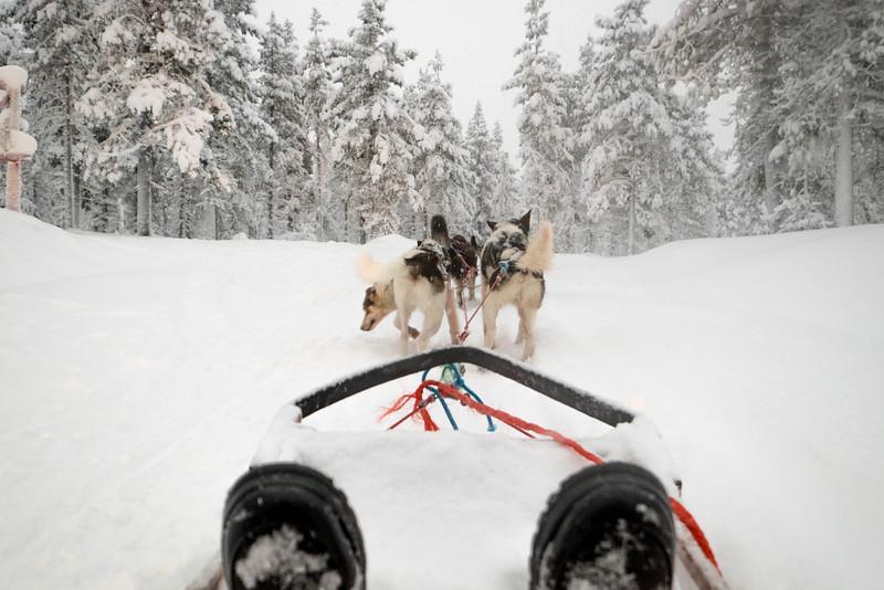 Finland_160116_33.jpg