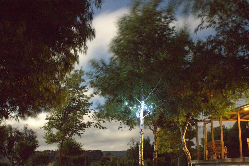 NSW_0083.jpg