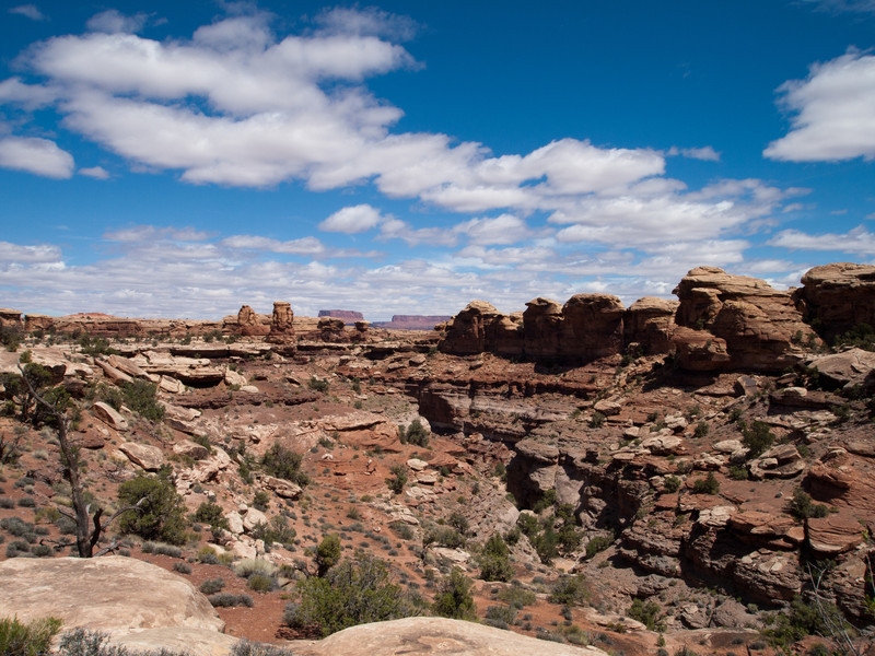 The Needles area of Canyonlands.  This part of the park is not as dramatic as Islands in the sky.  The more interesting parts require 4x4 off road vehicles.